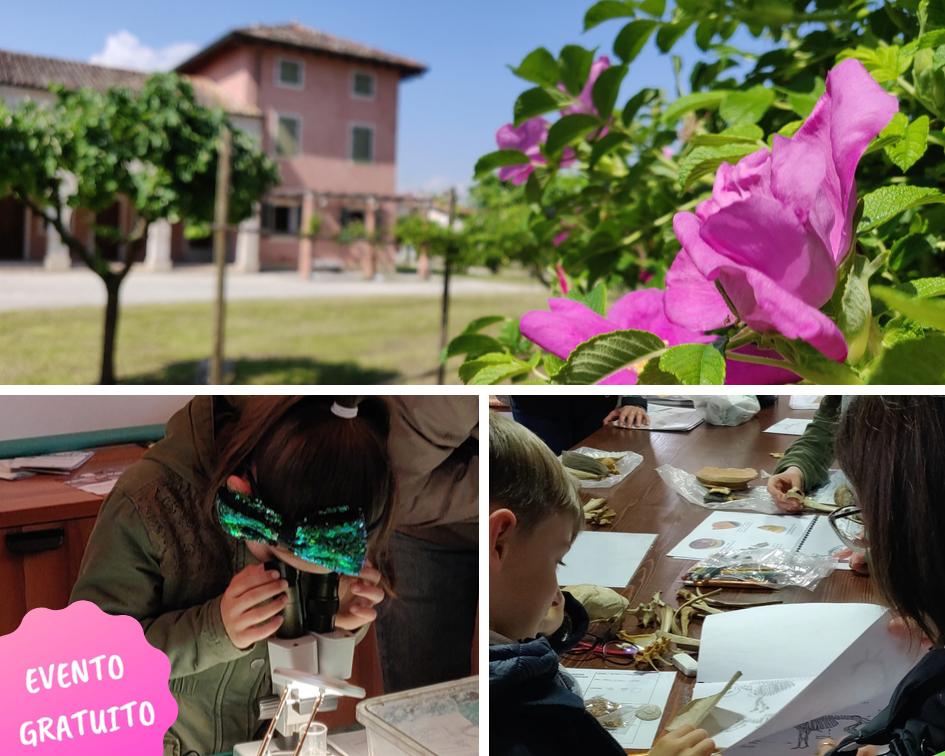 Visite guidate e laboratori gratuiti per famiglie al Cortino di Fratta